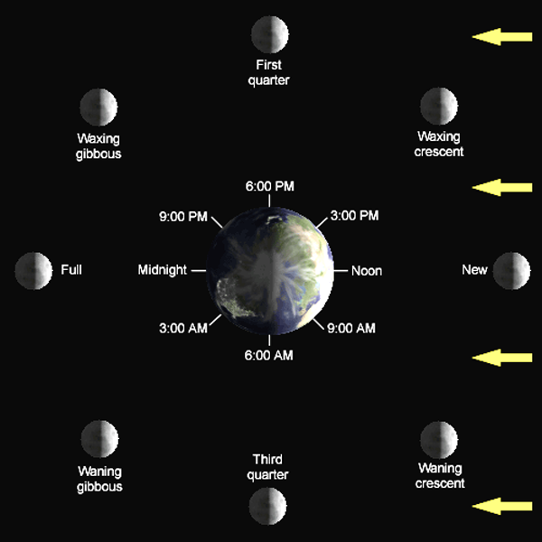 phases of the moon lunar cycle diagram shapes pictures names. Black Bedroom Furniture Sets. Home Design Ideas